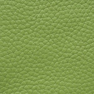 Soofre Grainy Leather Color Lime Green