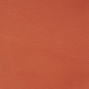 Soofre Smooth Leather Color Coral