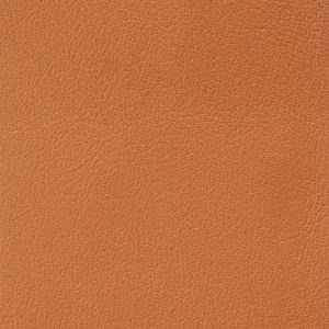 Soofre Smooth Leather Color Orange